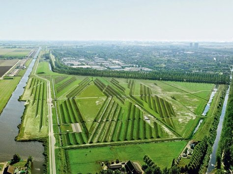 The 80-acre green space is the Buitenschot Land Art Park near Schiphol.