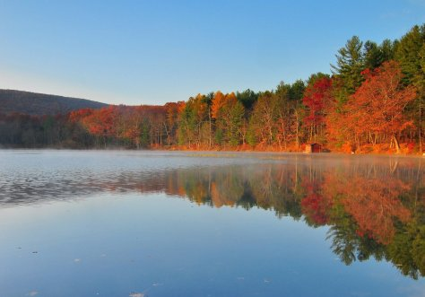 autumn-morning-at-laurel-lake-038c00456aedf1f4